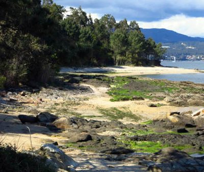 Punta Ladiña