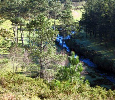 Río Barbanza preto da Portela