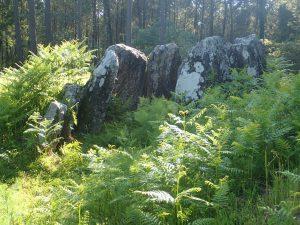 Pedra da Moura (Argalo)